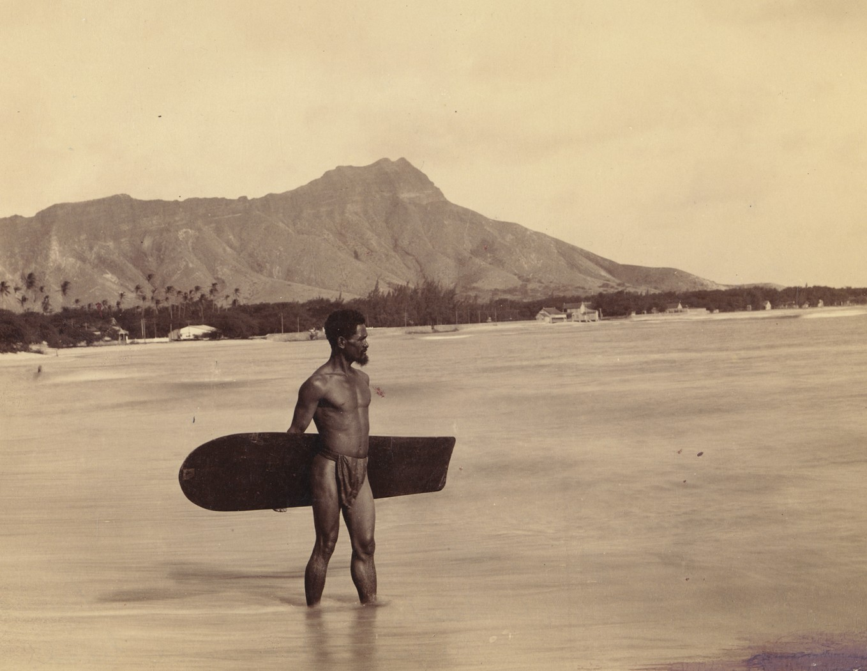 surf alaia
